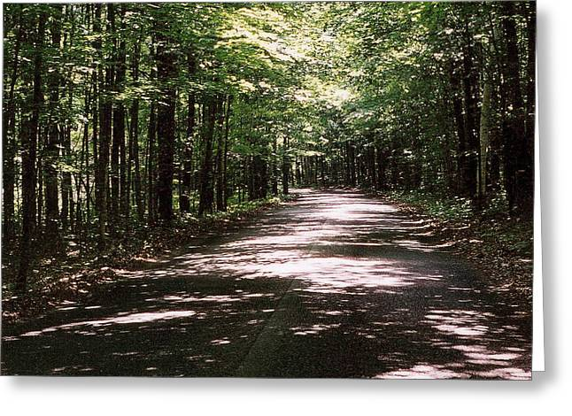 Greeting Card featuring the photograph Sun And Shadow Road In Summer  C3pdl by Lyle Crump