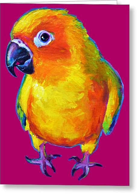 Sun Conure Parrot Greeting Card