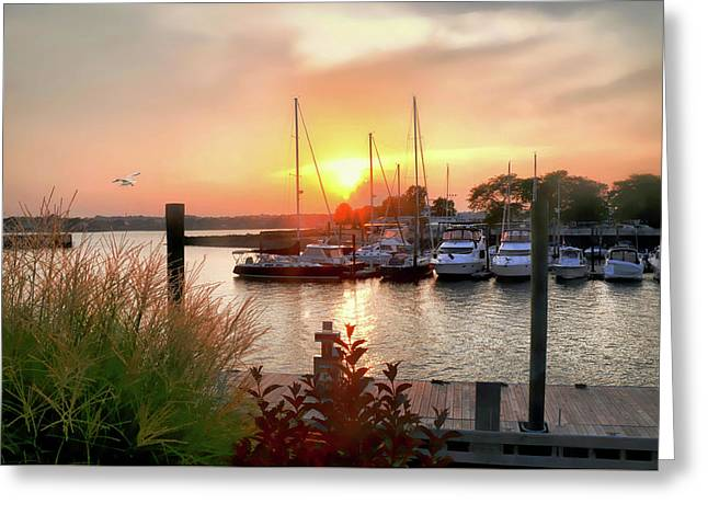 Sun Down Cove Marina Greeting Card by Diana Angstadt