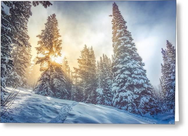 Sun Emerging Through Winter Fog Greeting Card by James Udall