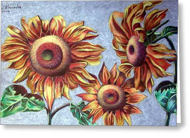 Sun Flower Greeting Card by Chifan Catalin  Alexandru