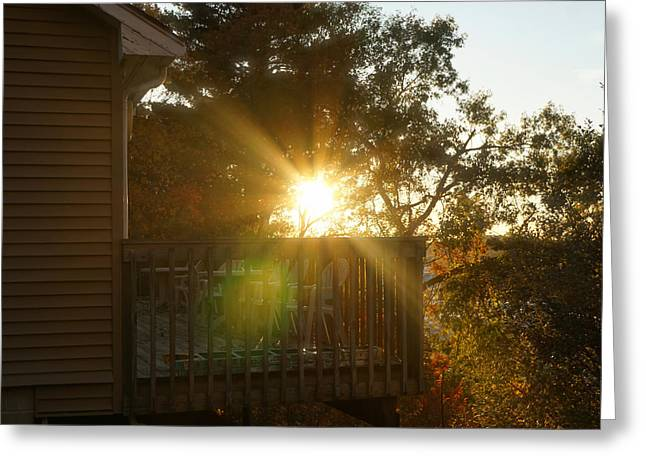 Sun Glow Before Sunset Greeting Card by Lilia D