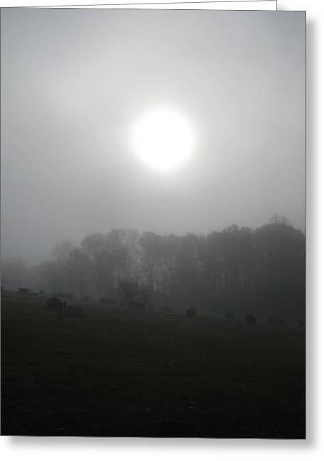 Sun In Fog Over Cemetery Greeting Card by Richard Singleton