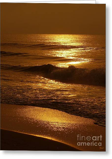Sun Kissed Greeting Card by Jeff Breiman