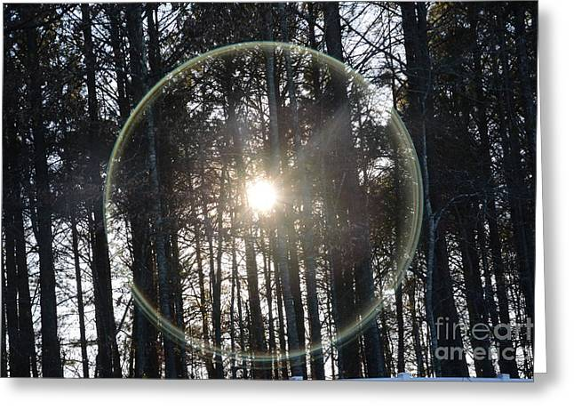 Sun Or Lens Flare In Between The Woods -georgia Greeting Card