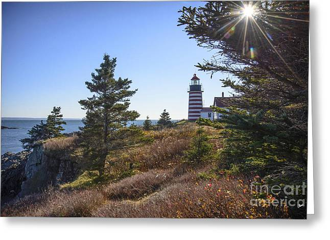 Sun Over West Quoddy Head Lighthouse Greeting Card by Alana Ranney