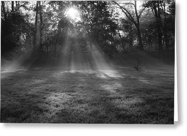 Sun Rays Though Fog Greeting Card by Sven Brogren