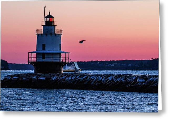 Sun Rise At Spring Point Greeting Card