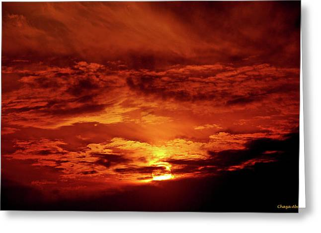 Sun Set II Greeting Card by Chaza Abou El Khair