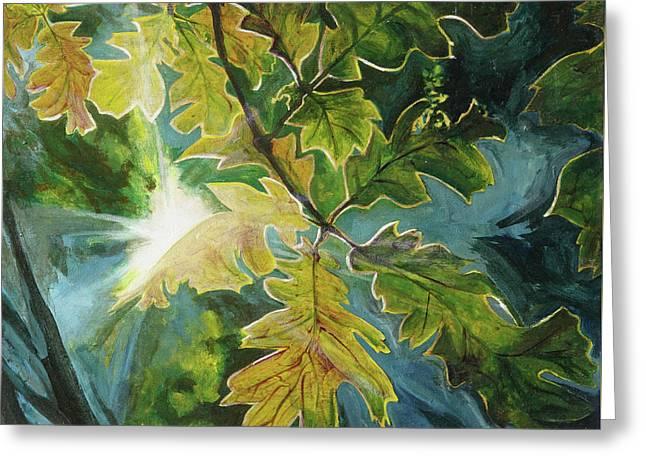 Sun Through Oak Leaves Greeting Card