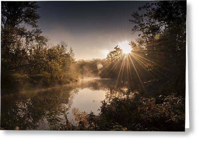 Sunbeams  Greeting Card by Annette Berglund