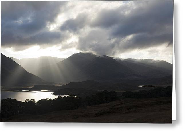 Sunbeams In Glen Affric Greeting Card by Sue Arber