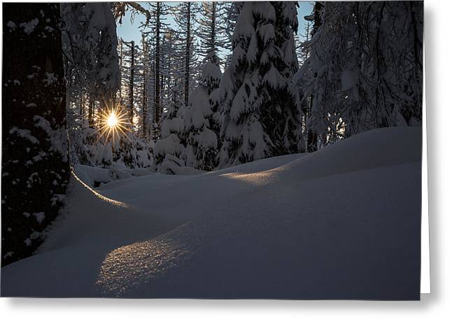Sunburst In Winter Fairytale Forest Harz Greeting Card by Andreas Levi