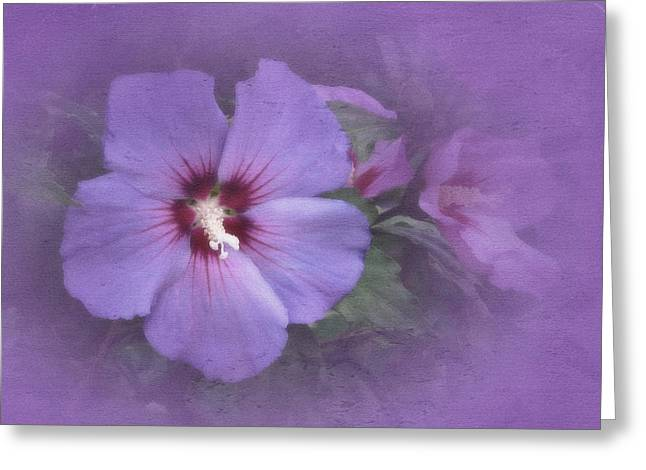 Sunday Hibiscus Greeting Card by Richard Cummings
