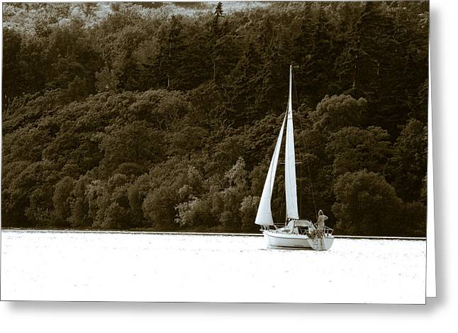 Sunday Sailor Greeting Card by Andy Smy