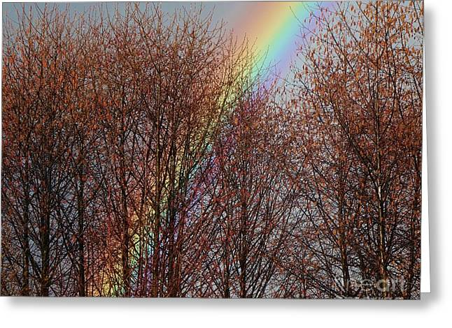 Greeting Card featuring the photograph Sunday's Rainbow by Laura  Wong-Rose