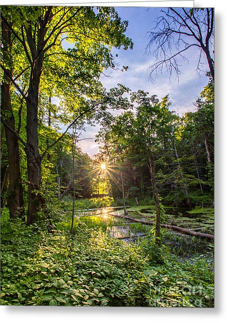 Sundown At Creekside Greeting Card