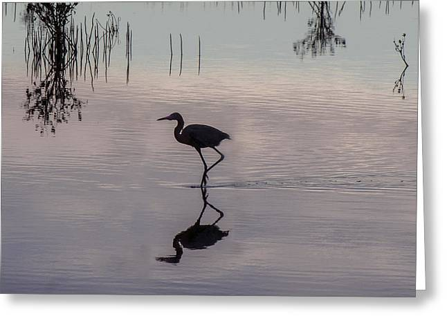 Sundown Heron Silhouette Greeting Card
