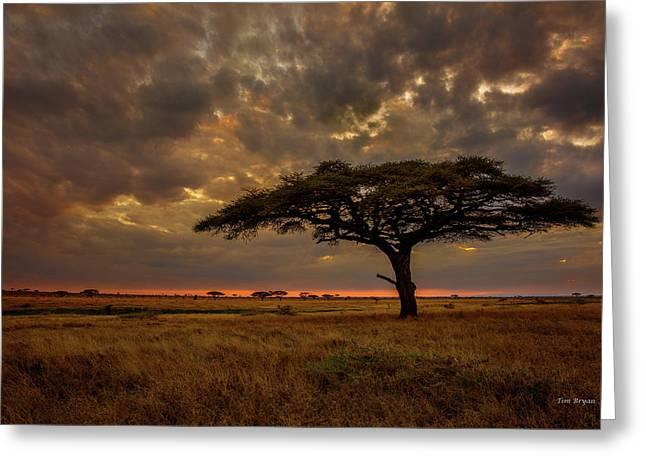 Sundown, Namiri Plains Greeting Card