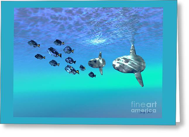Sunfish Greeting Card