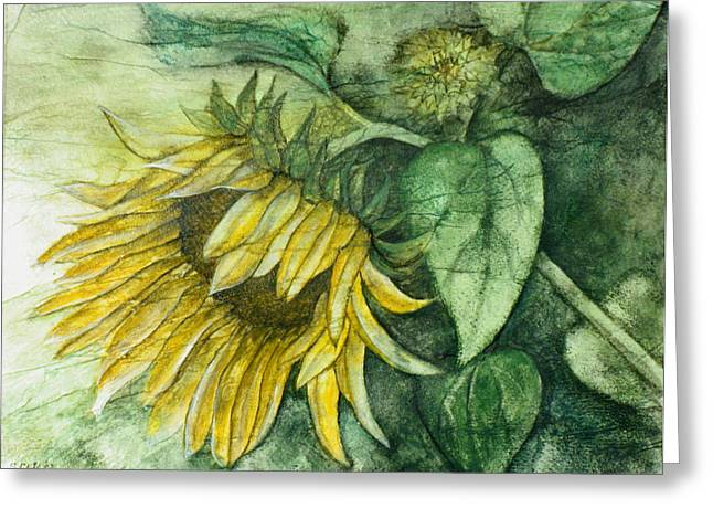 Sunflower At Dusk Greeting Card by Sandy Clift