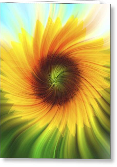 Sunflower Beams 2 Greeting Card by Terry DeLuco