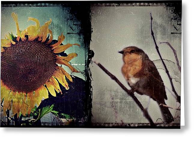 Sunflower Bird Diptych Greeting Card