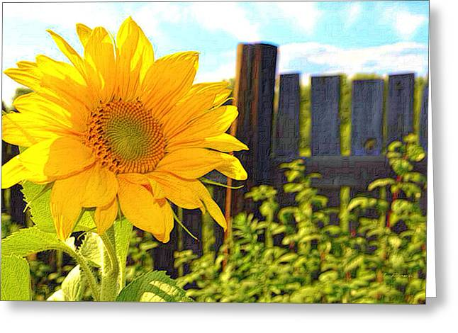 Sunflower By The Fence Greeting Card by L Brown