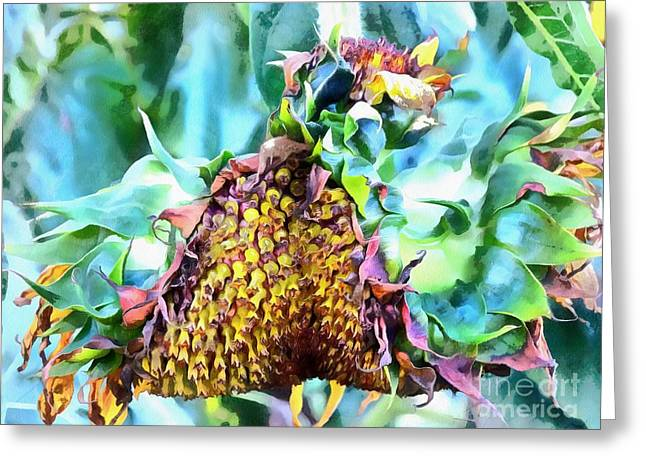 Sunflower Carnaval - Carnaval De Girasole Greeting Card