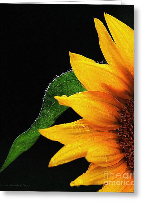 Sunflower Greeting Card
