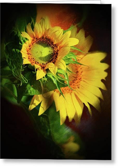 Sunflower Delight Greeting Card