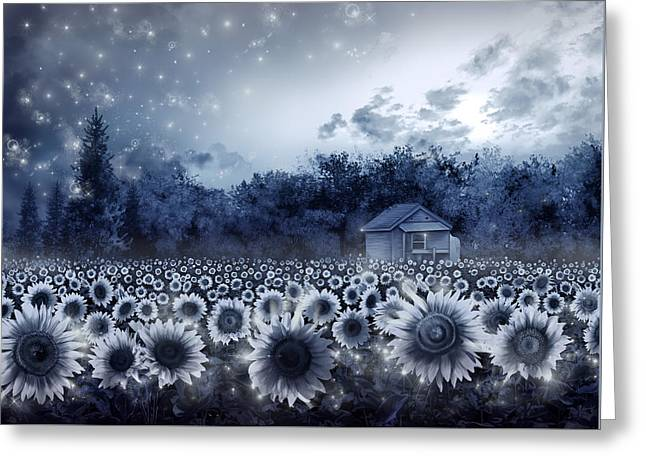 Sunflower Field  Greeting Card by Bekim Art
