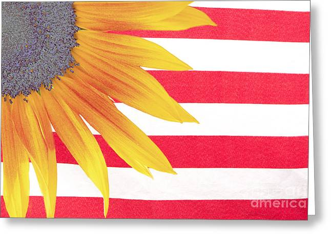 Sunflower Flag Greeting Card by James BO  Insogna
