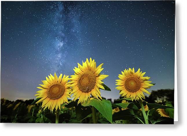 Sunflower Galaxy II Greeting Card