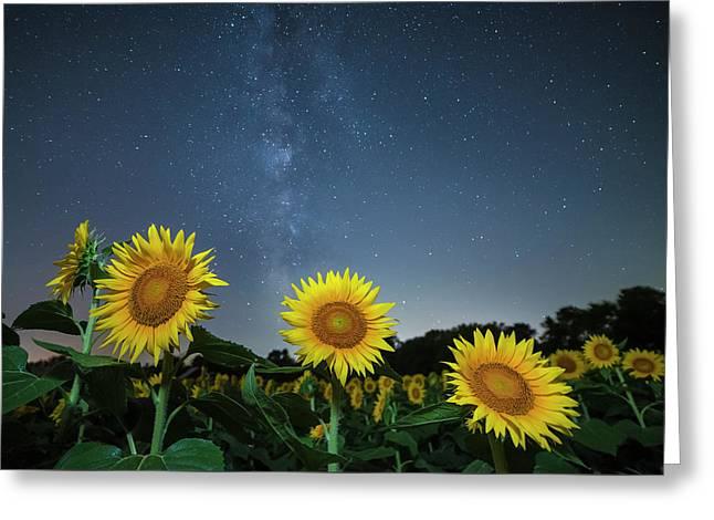 Sunflower Galaxy V Greeting Card