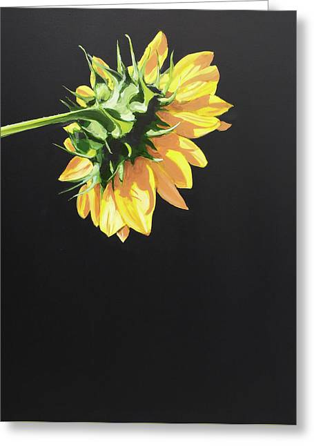 Sunflower Greeting Card by Jeffrey Bess