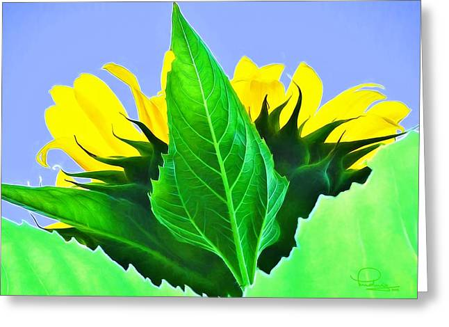 Sunflower Greeting Card by Ludwig Keck