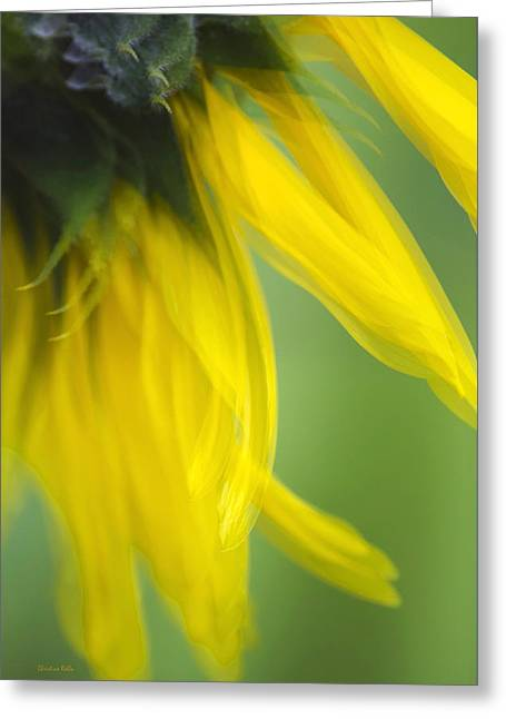 Sunflower Motion Blur Greeting Card