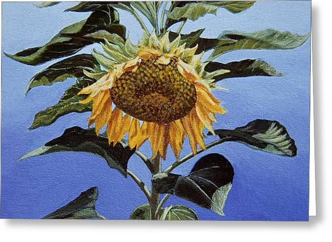 Sunflower Nodding Greeting Card by Jiji Lee