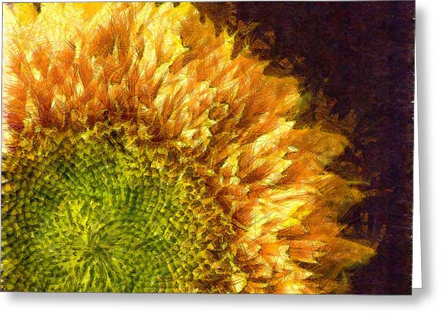 Sunflower Pencil Greeting Card