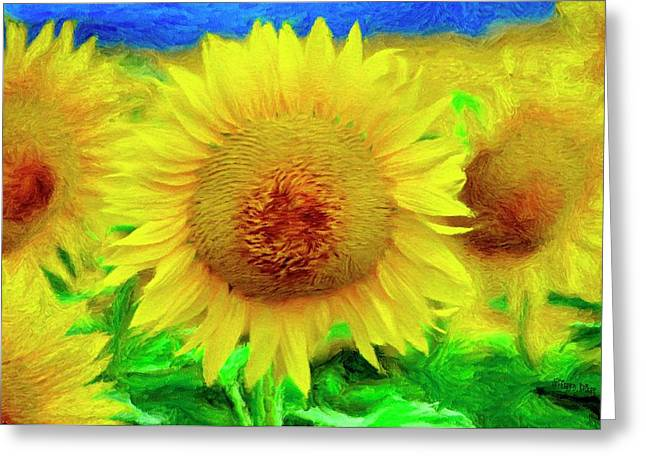 Sunflower Posing Greeting Card by Jeffrey Kolker