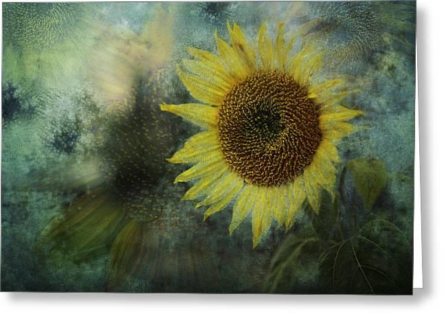 Sunflower Sea Greeting Card by Belinda Greb