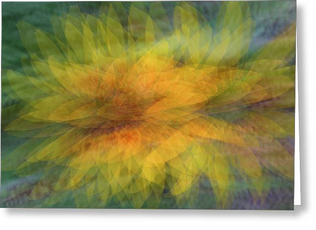 Greeting Card featuring the photograph Sunflower Shimmy by Deborah Hughes