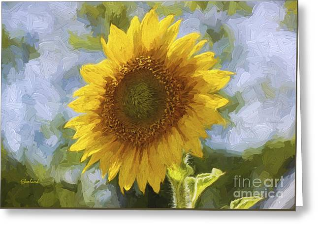 Sunflower Soaking Up The Sun Greeting Card