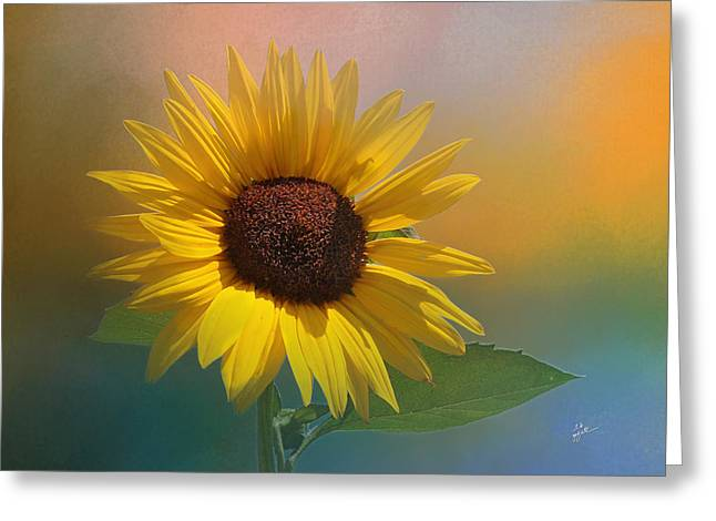 Sunflower Summer Greeting Card by TK Goforth