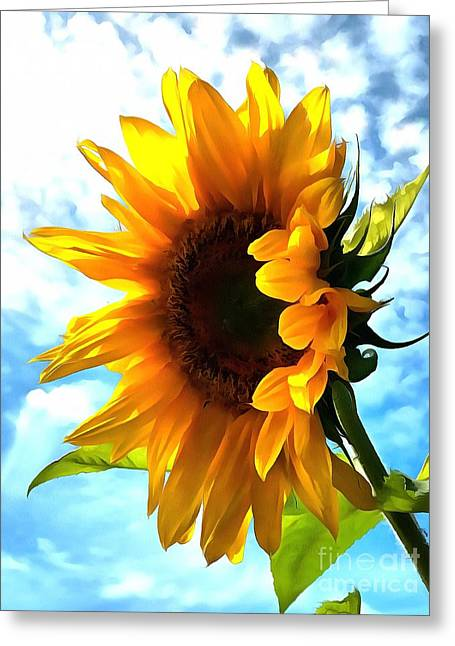 Sunflower - Sun Shine On Greeting Card