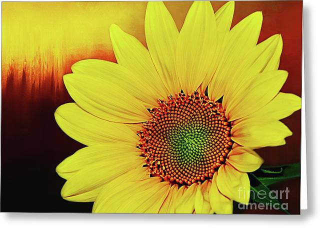 Sunflower Sunset By Kaye Menner Greeting Card by Kaye Menner