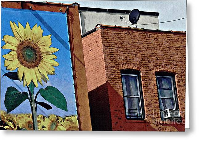 Sunflower Town Greeting Card