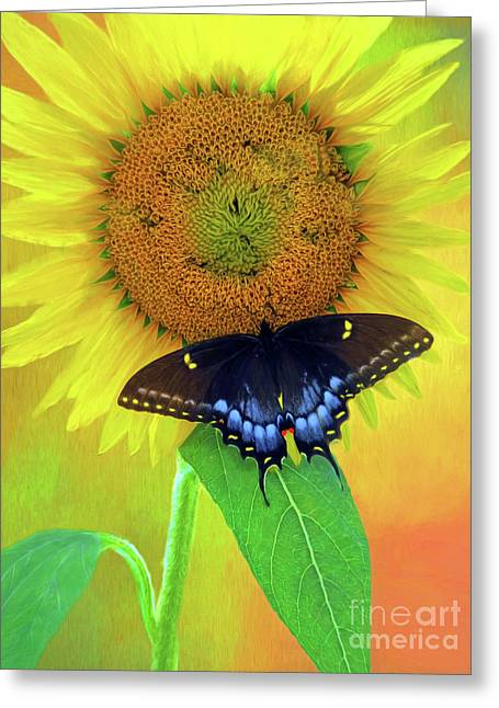 Sunflower With Company Greeting Card