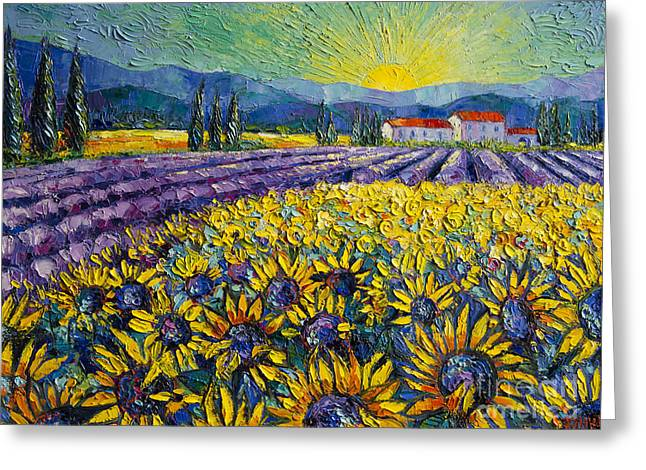 Sunflowers And Lavender Field - The Colors Of Provence Modern Impressionist Palette Knife Painting Greeting Card